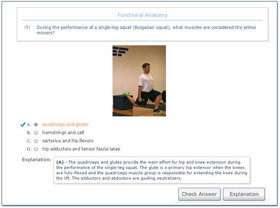 Online CPT Practice Exam I